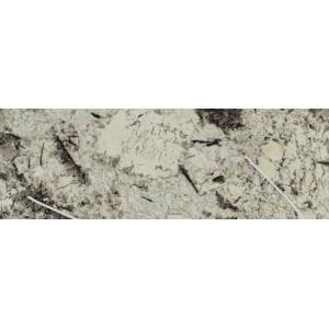 Image for Granite 18527-1-1: Copenhagen